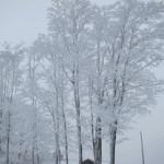 レイク・プラシッドの氷霧